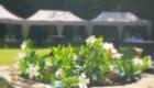 Tente-extérieures-Clos-Barthélemy-Château-d'Eterpigny-Reception-Réunion-Séminaire-Arras-Douai-Cambrai